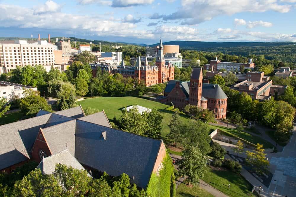 Cornell School