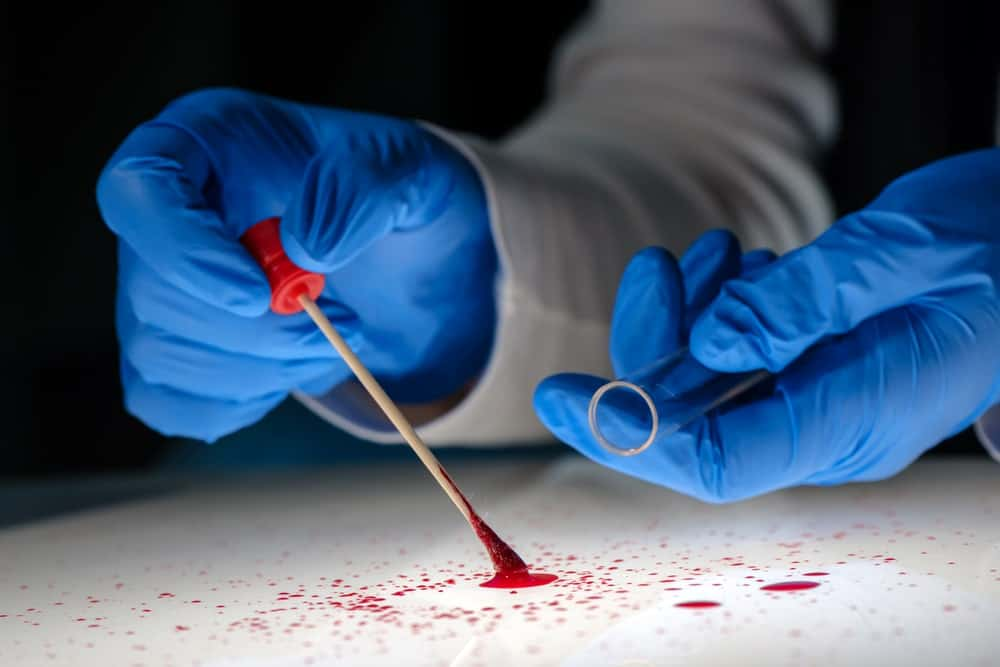 A blood spatter analyst at work